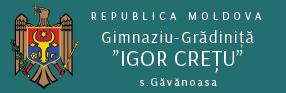 "Gimnaziul – Grădiniță ""Igor Crețu"", s. Găvănoasa"